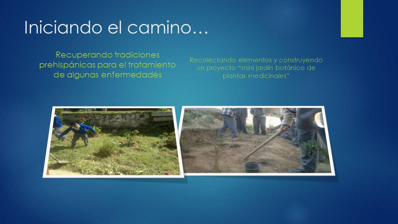 Iniciando el camino… Recuperando tradiciones prehispánicas para el tratamiento de algunas enfermedades.