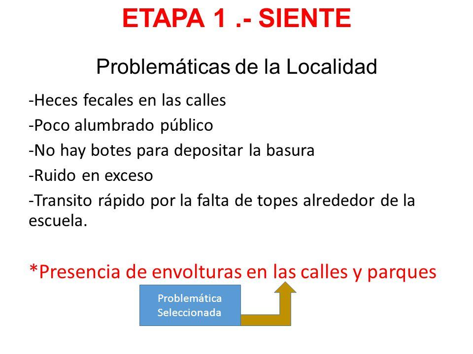 ETAPA 1 .- SIENTE Problemáticas de la Localidad