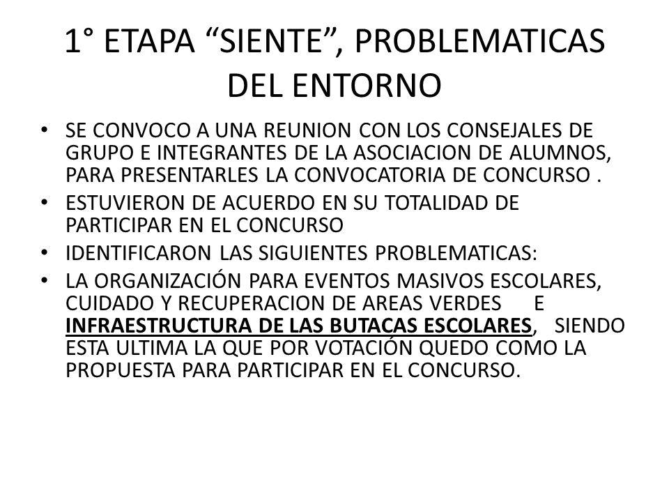 1° ETAPA SIENTE , PROBLEMATICAS DEL ENTORNO