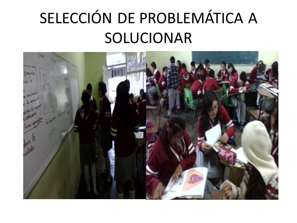 SELECCIÓN DE PROBLEMÁTICA A SOLUCIONAR