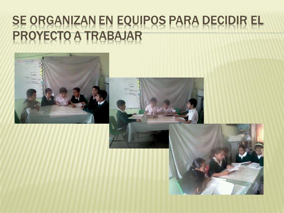 Se organizan en equipos para decidir el proyecto a trabajar