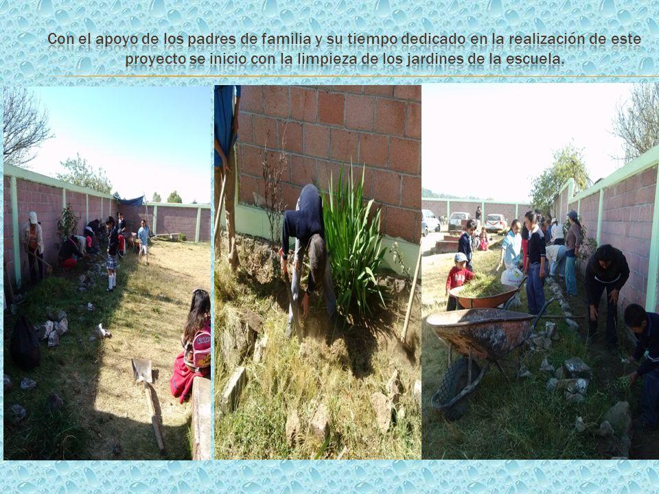 Con el apoyo de los padres de familia y su tiempo dedicado en la realización de este proyecto se inicio con la limpieza de los jardines de la escuela.