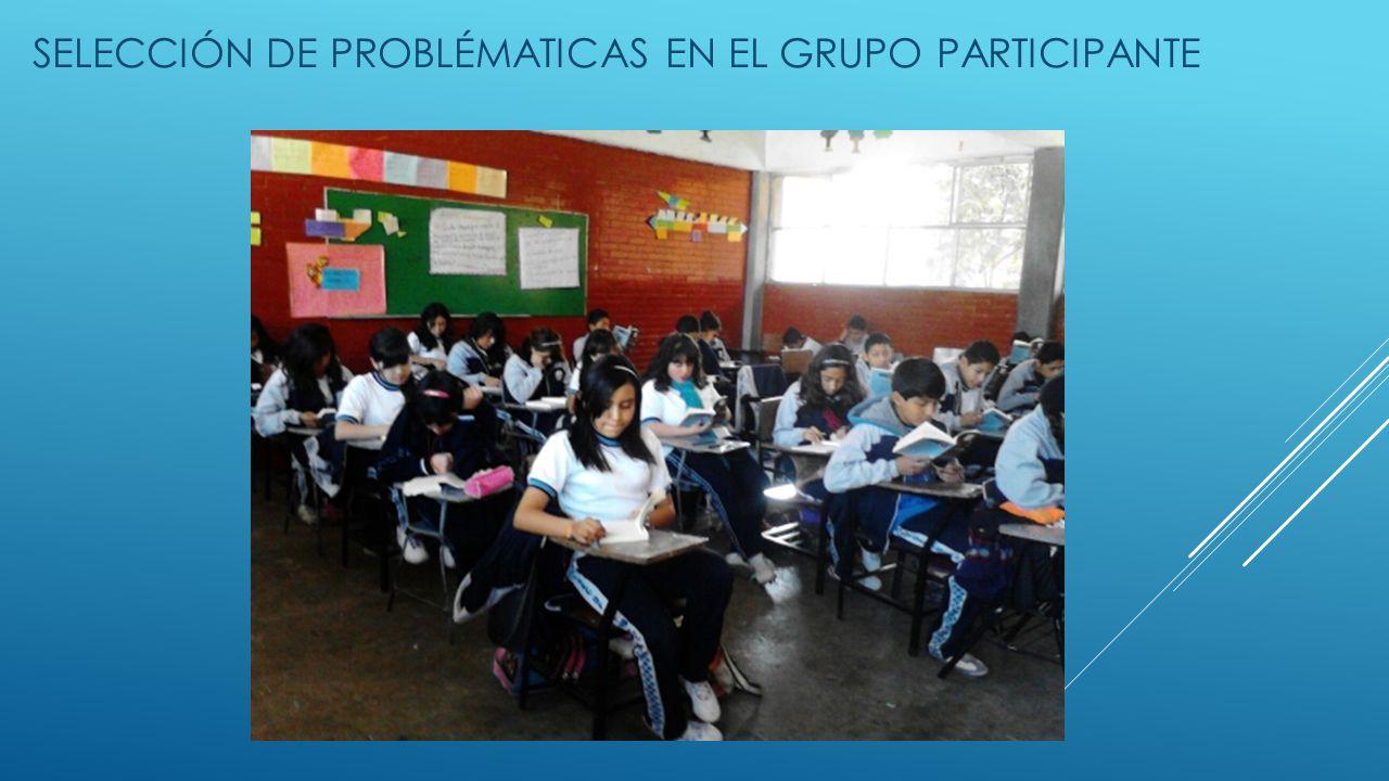 SELECCIÓN DE PROBLÉMATICAS EN EL GRUPO PARTICIPANTE