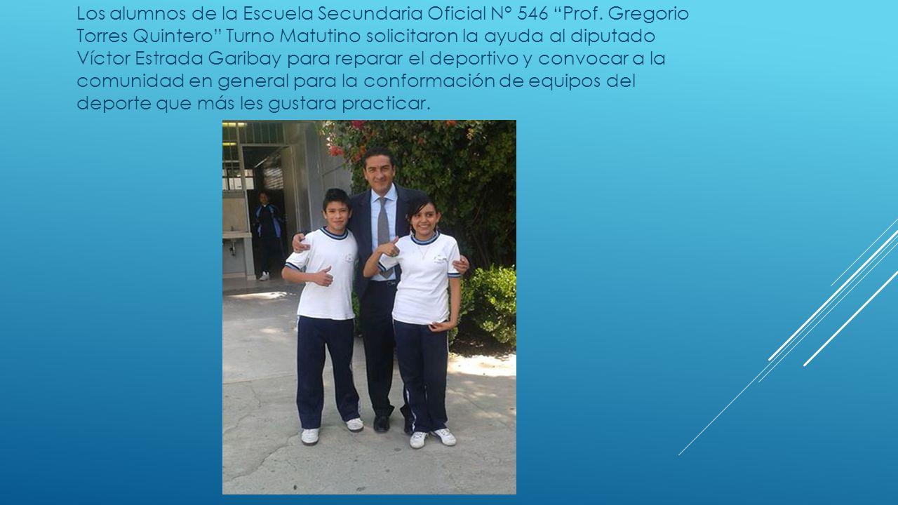 Los alumnos de la Escuela Secundaria Oficial N° 546 Prof