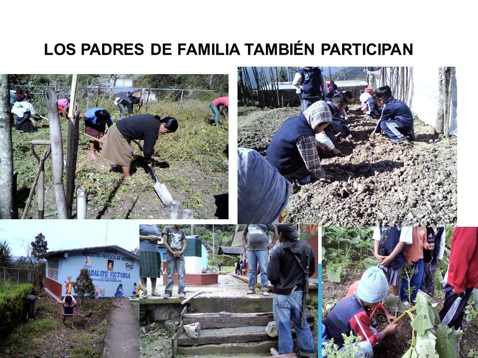 LOS PADRES DE FAMILIA TAMBIÉN PARTICIPAN