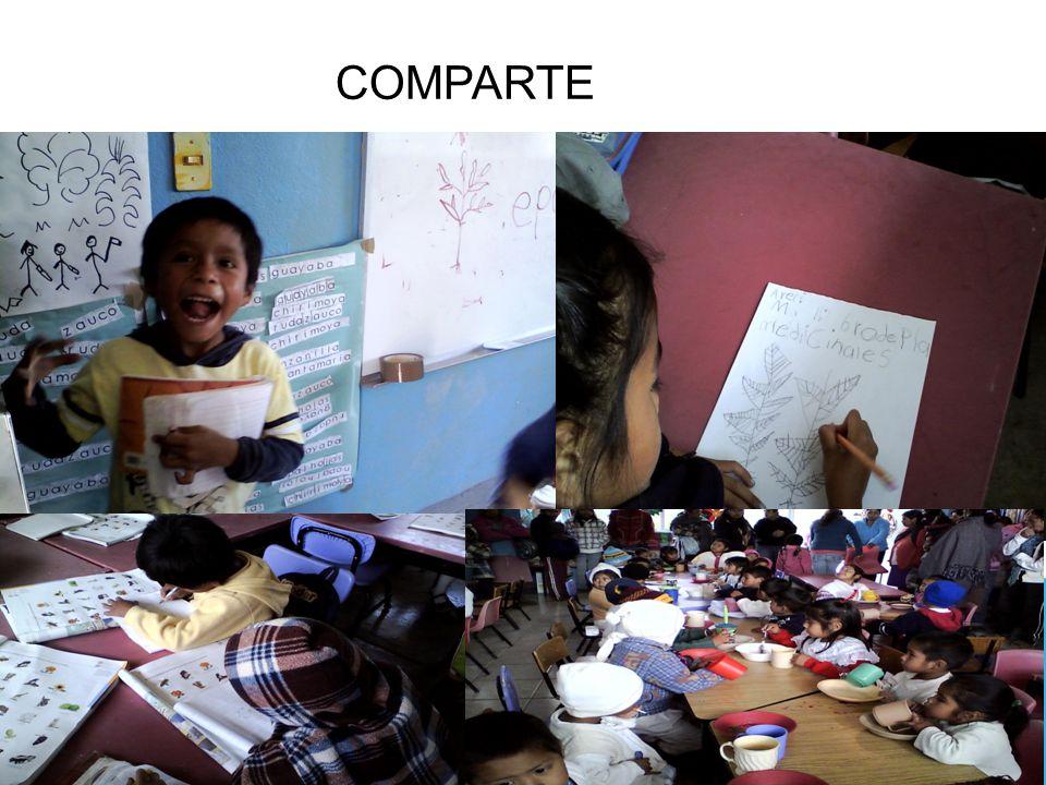 COMPARTE