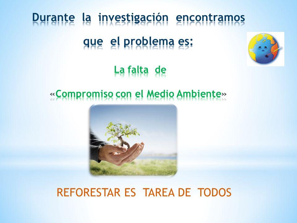 REFORESTAR ES TAREA DE TODOS