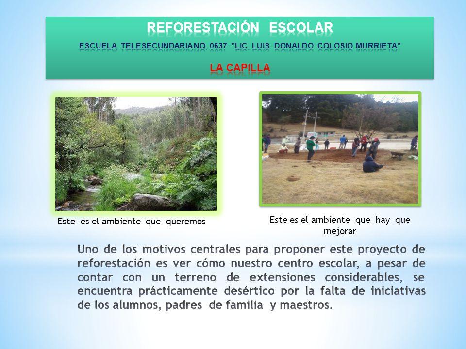 REFORESTACIÓN ESCOLAR ESCUELA TELESECUNDARIA NO. 0637 LIC