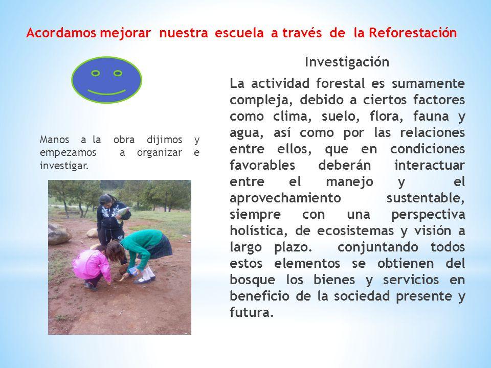 Acordamos mejorar nuestra escuela a través de la Reforestación