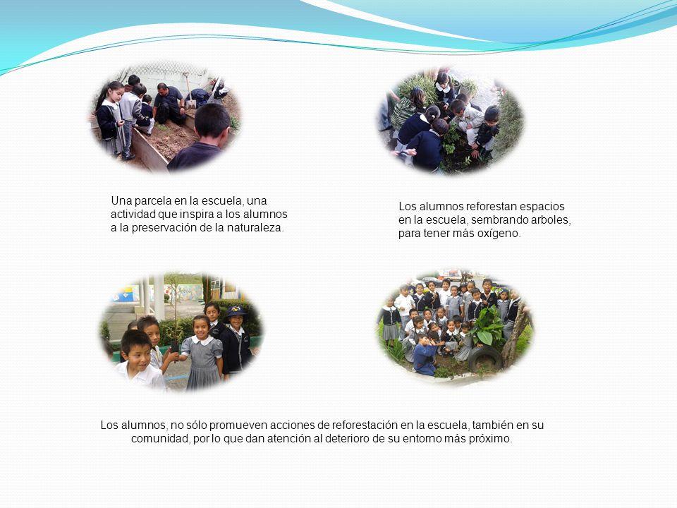 Una parcela en la escuela, una actividad que inspira a los alumnos a la preservación de la naturaleza.