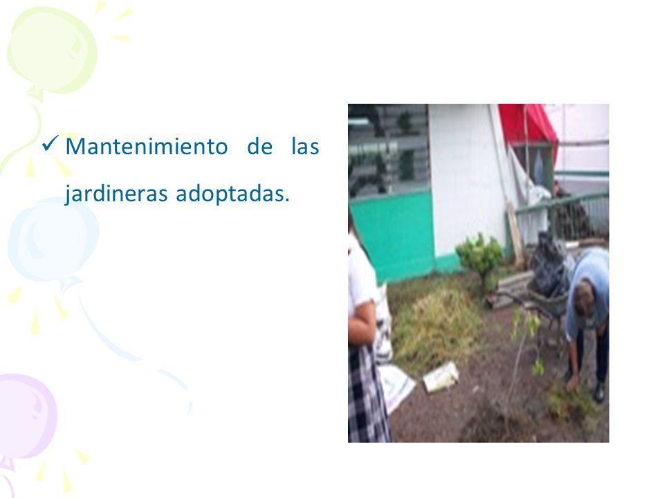 Mantenimiento de las jardineras adoptadas.