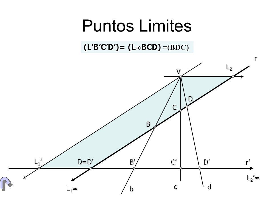 Puntos Limites (L'B'C'D')= (LBCD) =(BDC) r L2 V D C B L1' D=D' B' C'