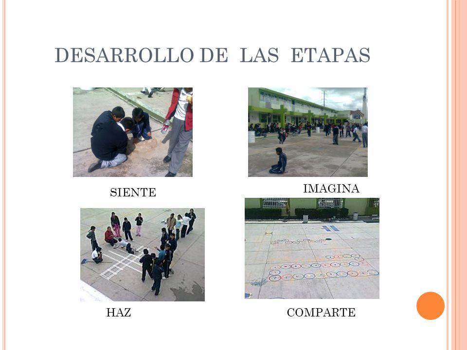 DESARROLLO DE LAS ETAPAS