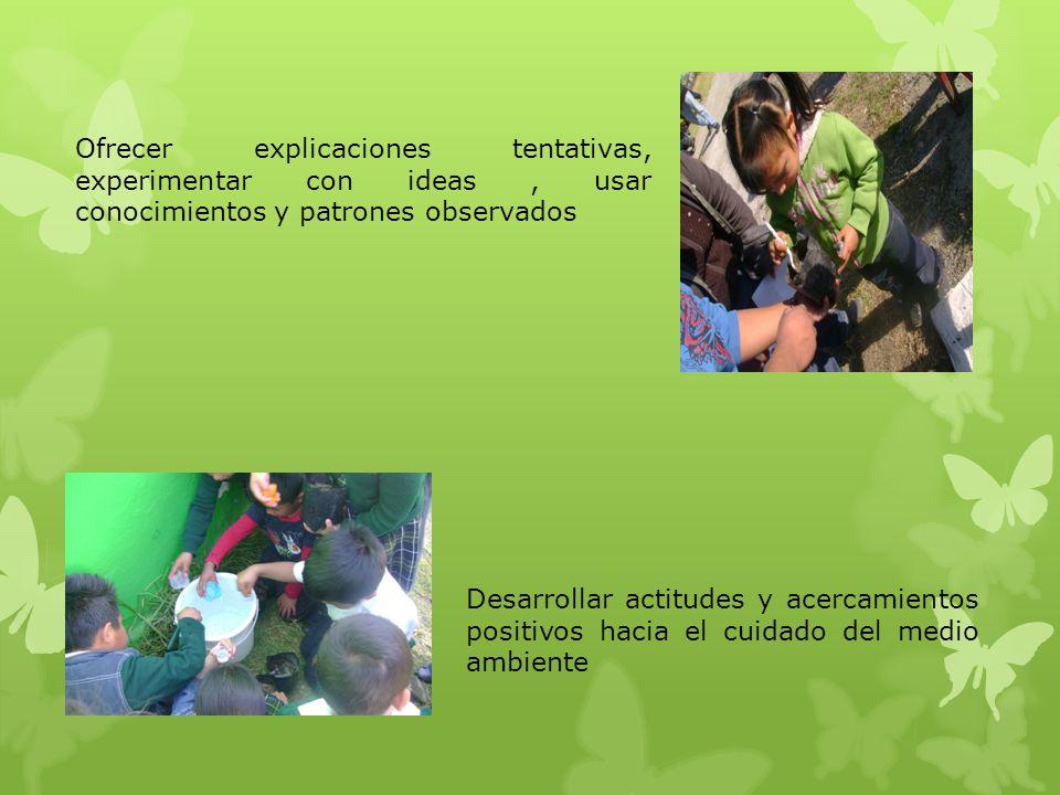 Ofrecer explicaciones tentativas, experimentar con ideas , usar conocimientos y patrones observados