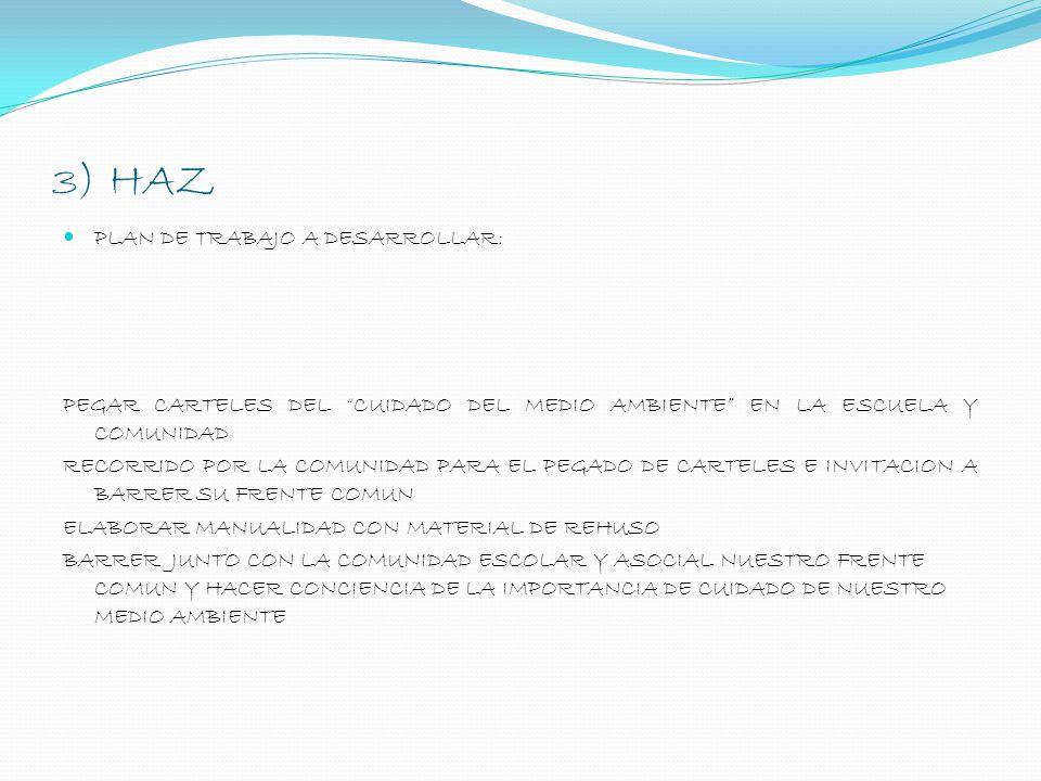 3) HAZ PLAN DE TRABAJO A DESARROLLAR: