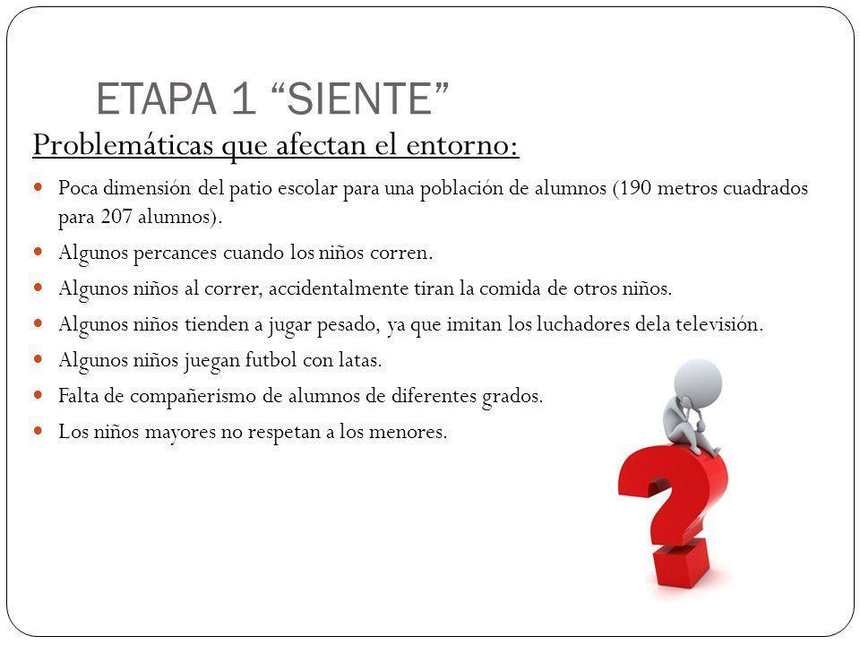 ETAPA 1 SIENTE Problemáticas que afectan el entorno: