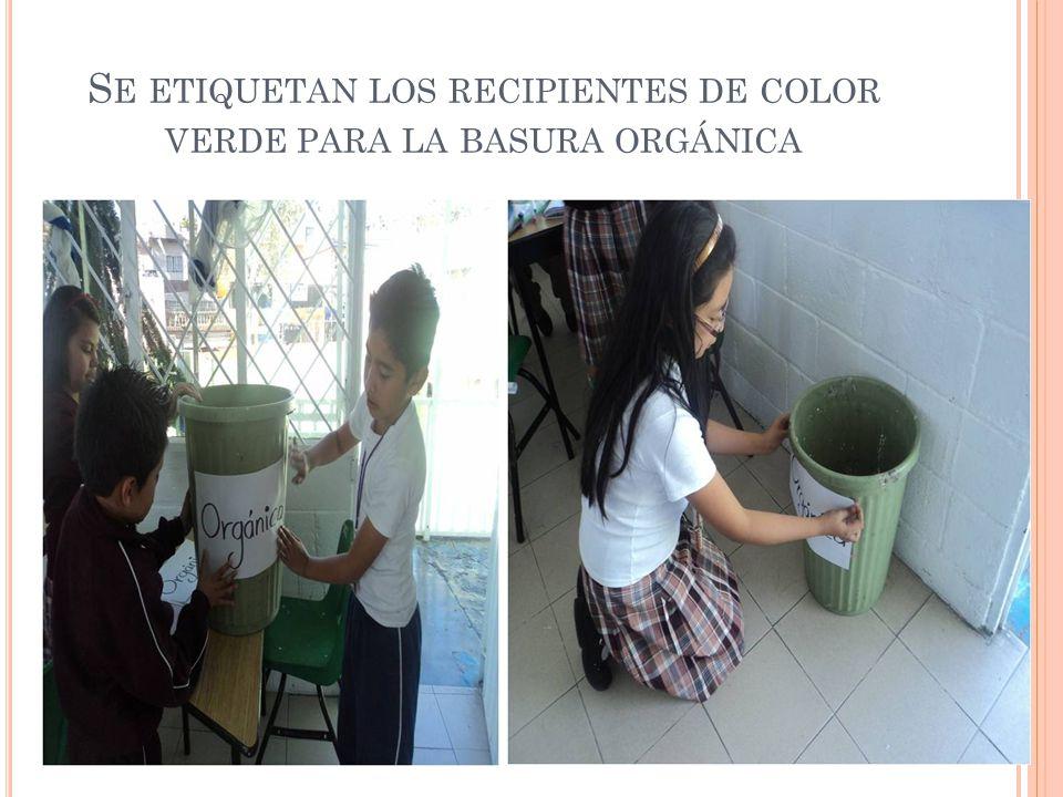 Se etiquetan los recipientes de color verde para la basura orgánica