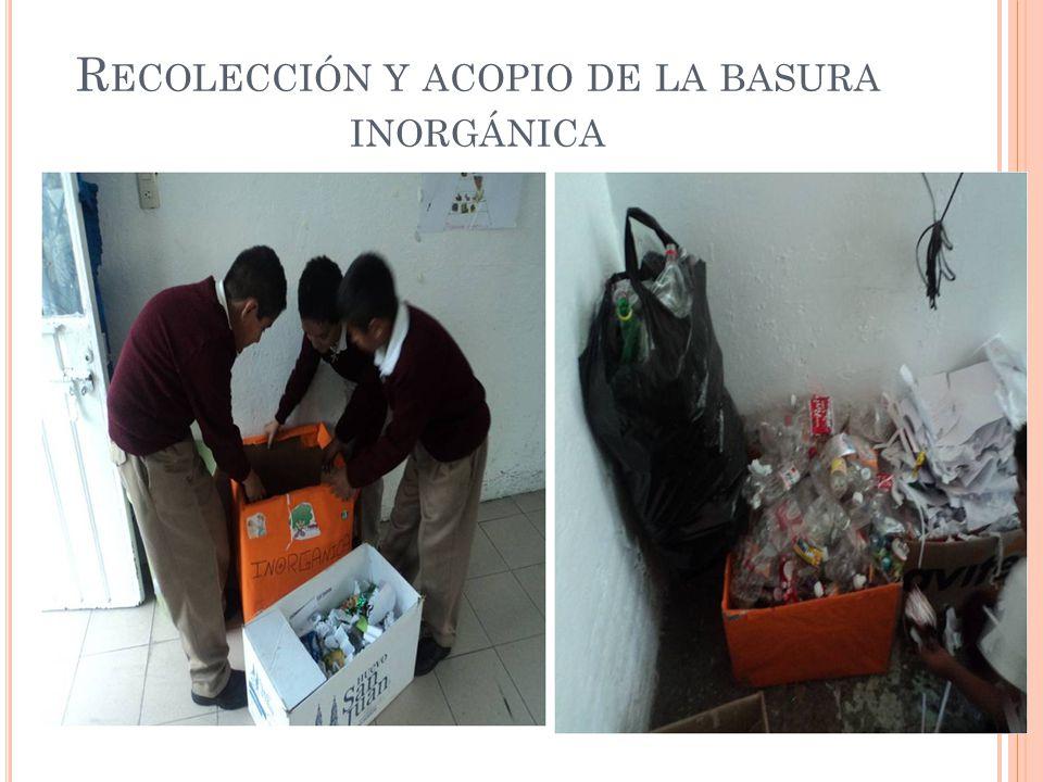 Recolección y acopio de la basura inorgánica