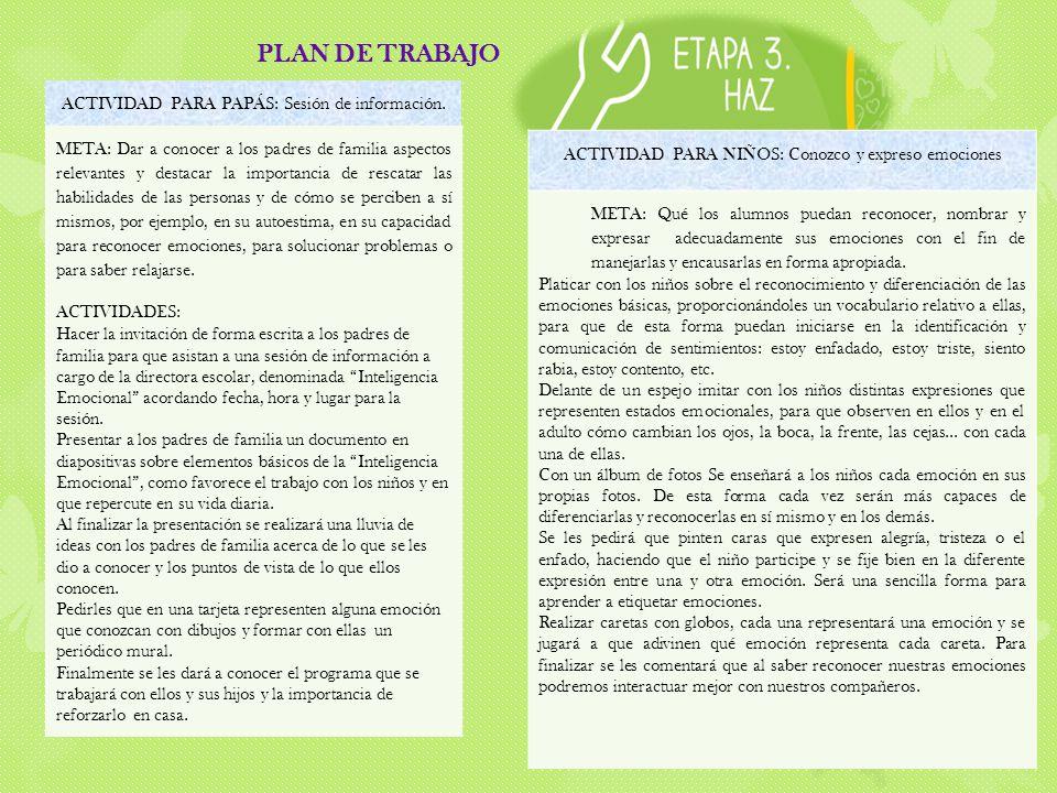 PLAN DE TRABAJO ACTIVIDAD PARA PAPÁS: Sesión de información.