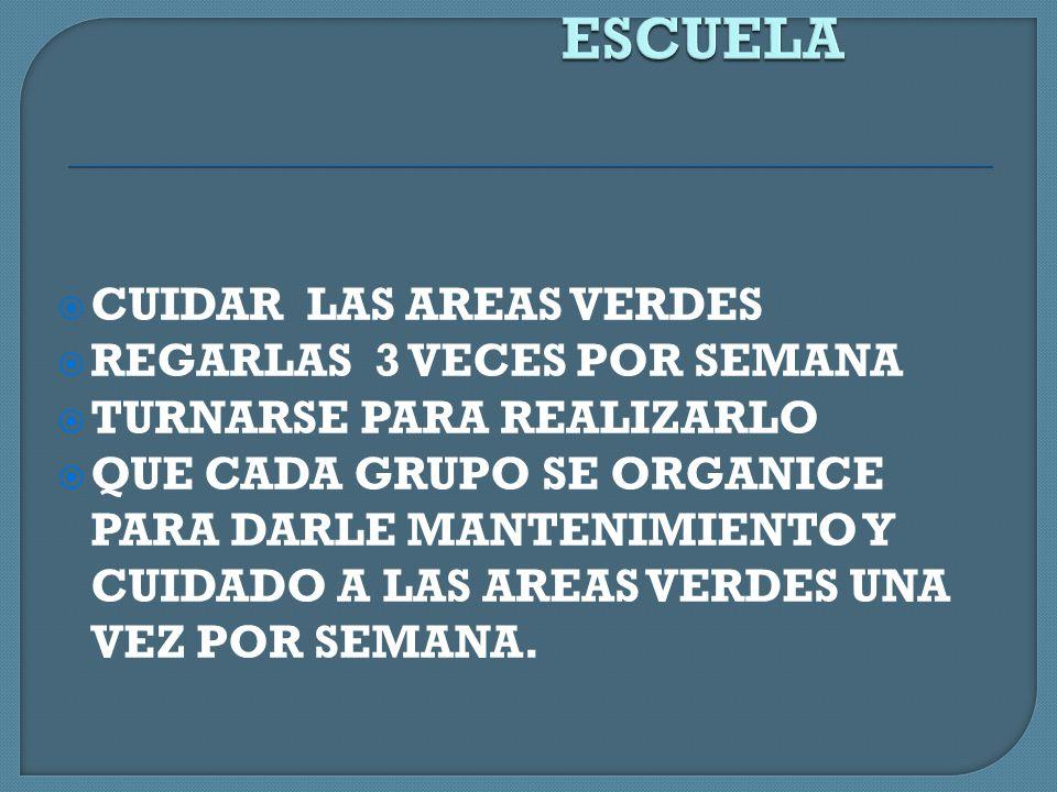 ACTIVIDADES A DESARROLLAR DENTRO DE LA ESCUELA