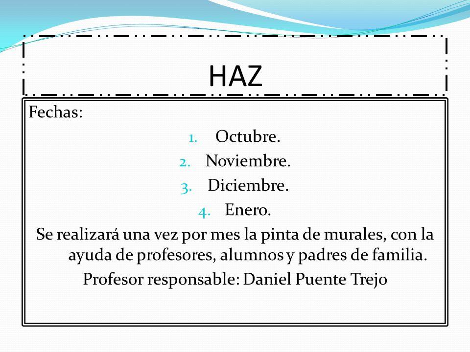 Profesor responsable: Daniel Puente Trejo