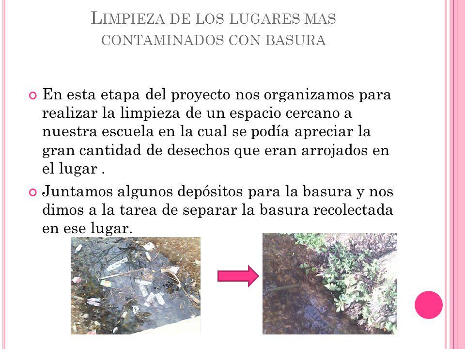 Limpieza de los lugares mas contaminados con basura