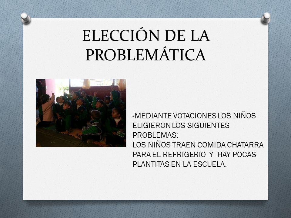 ELECCIÓN DE LA PROBLEMÁTICA