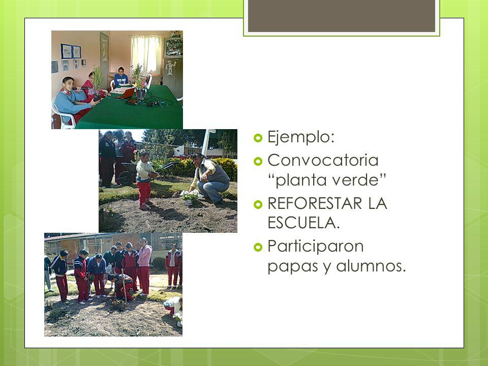 Ejemplo: Convocatoria planta verde REFORESTAR LA ESCUELA. Participaron papas y alumnos.