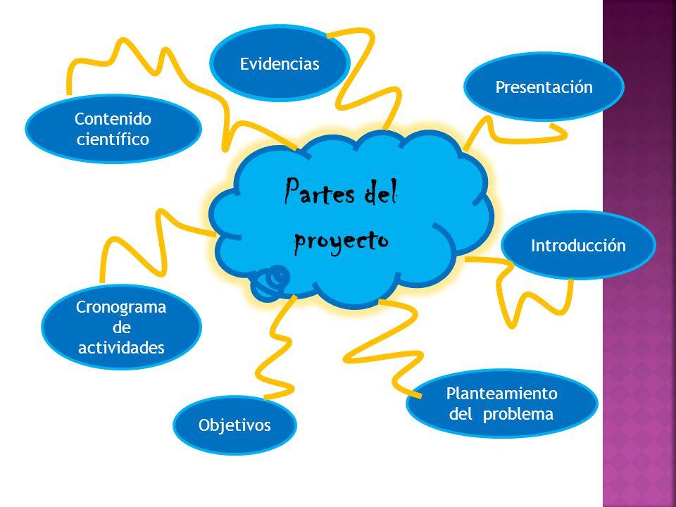 Partes del proyecto Evidencias Presentación Contenido científico