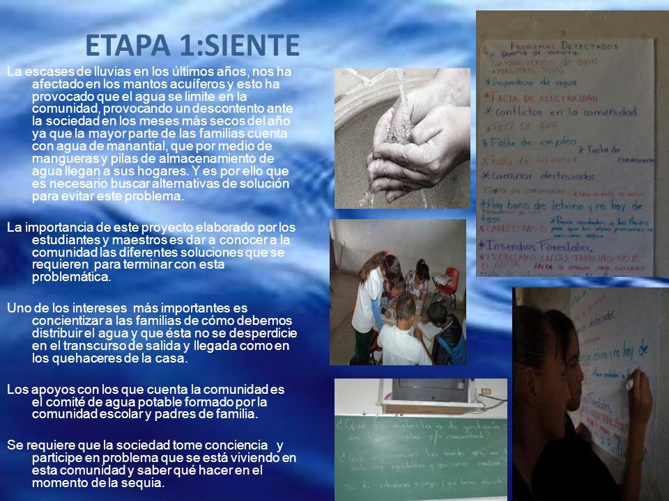 ETAPA 1:SIENTE