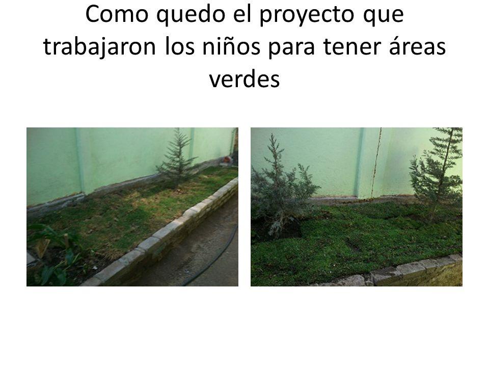 Como quedo el proyecto que trabajaron los niños para tener áreas verdes