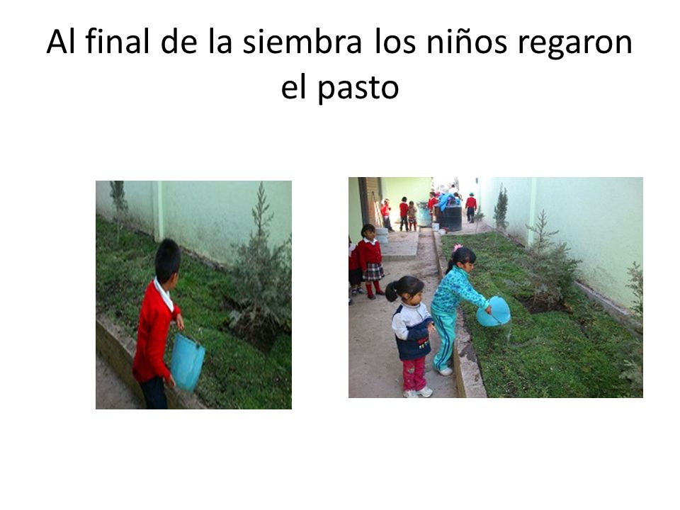 Al final de la siembra los niños regaron el pasto