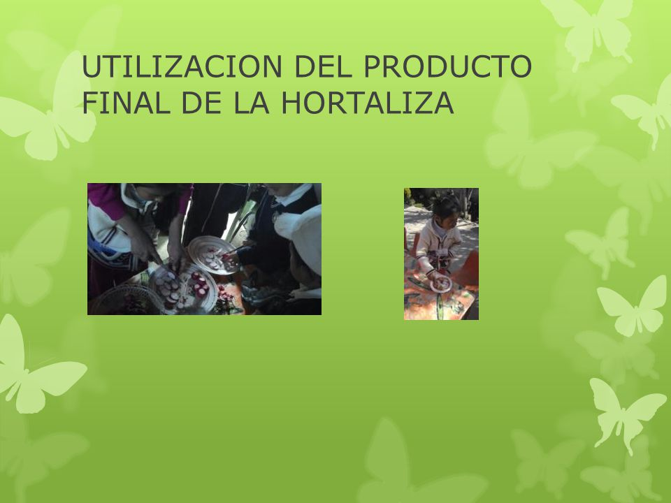 UTILIZACION DEL PRODUCTO FINAL DE LA HORTALIZA