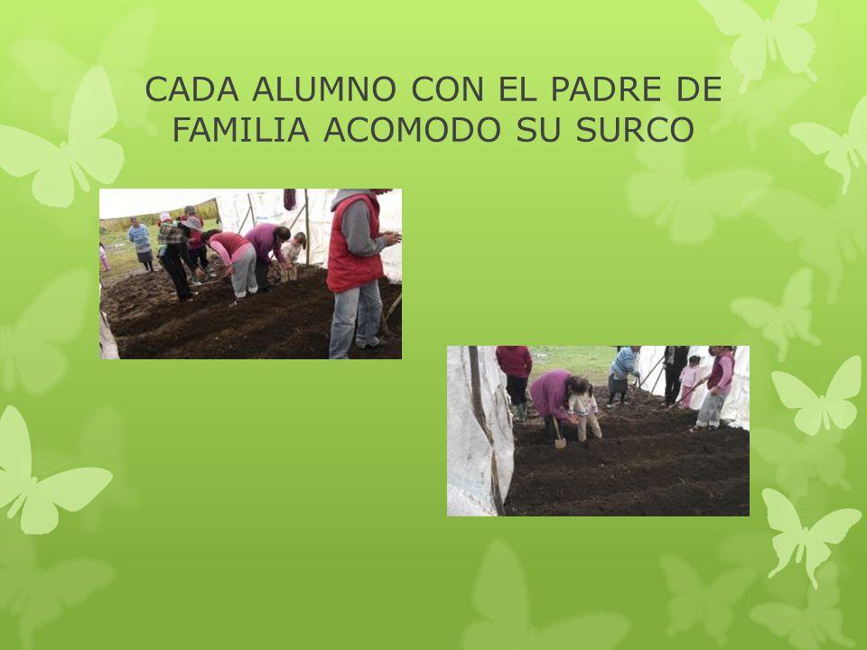 CADA ALUMNO CON EL PADRE DE FAMILIA ACOMODO SU SURCO