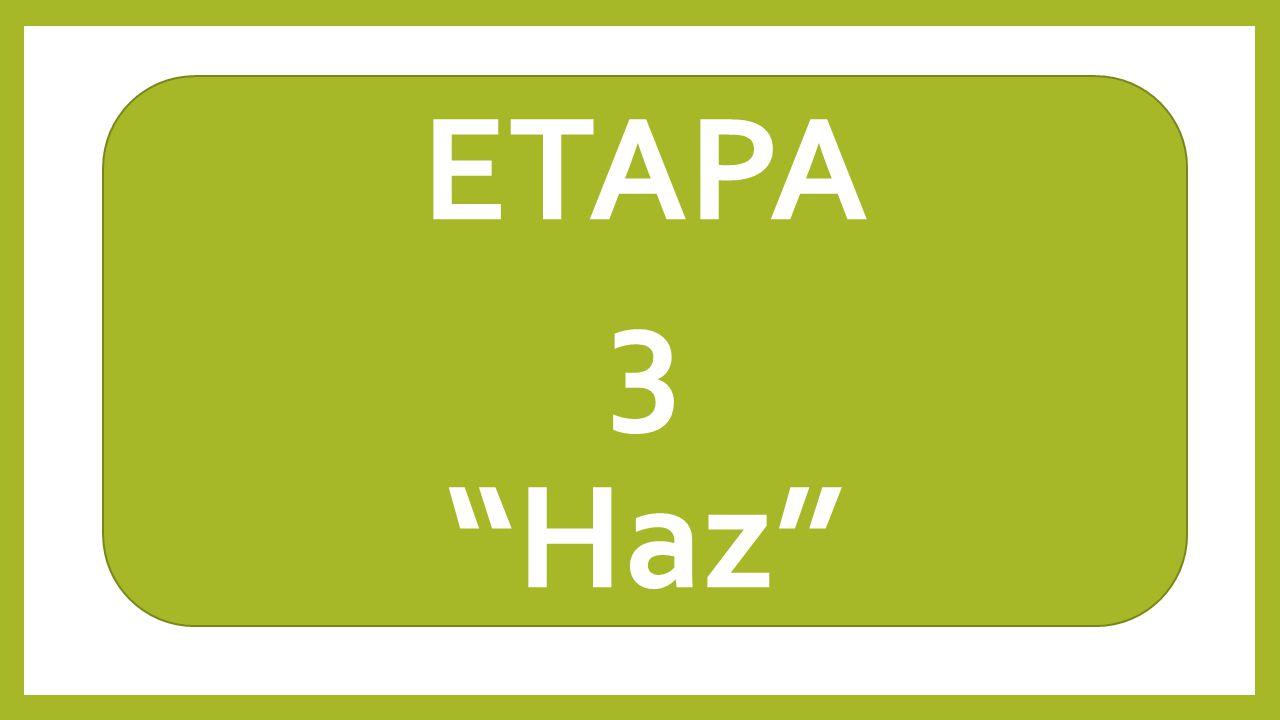 ETAPA 3 Haz