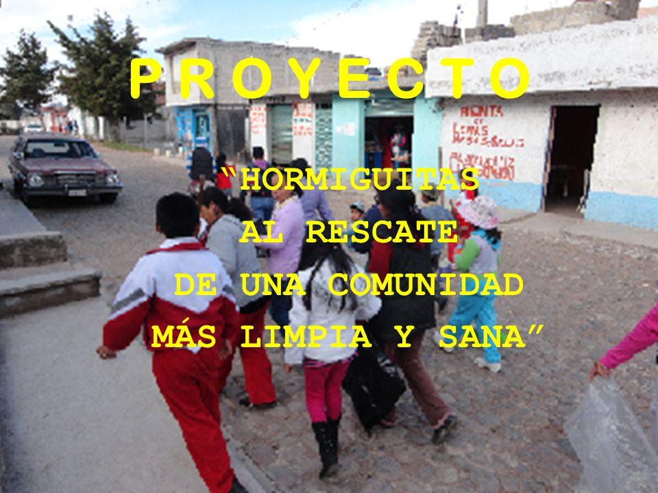 HORMIGUITAS AL RESCATE DE UNA COMUNIDAD MÁS LIMPIA Y SANA
