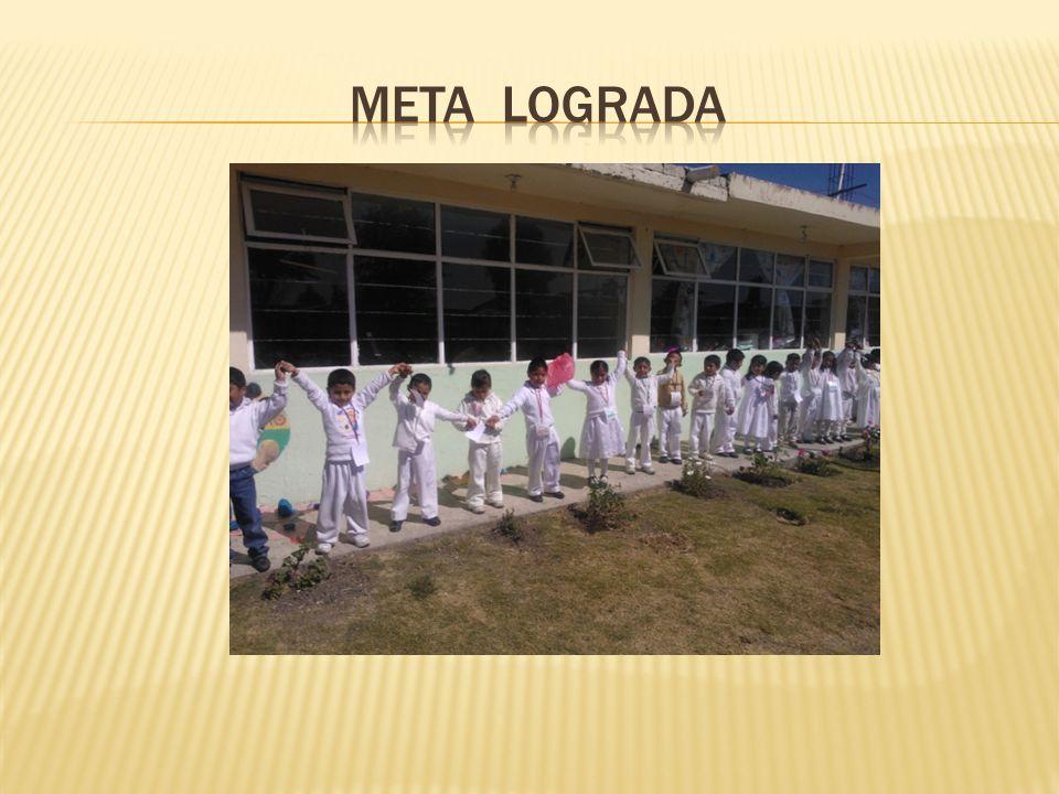 META LOGRADA