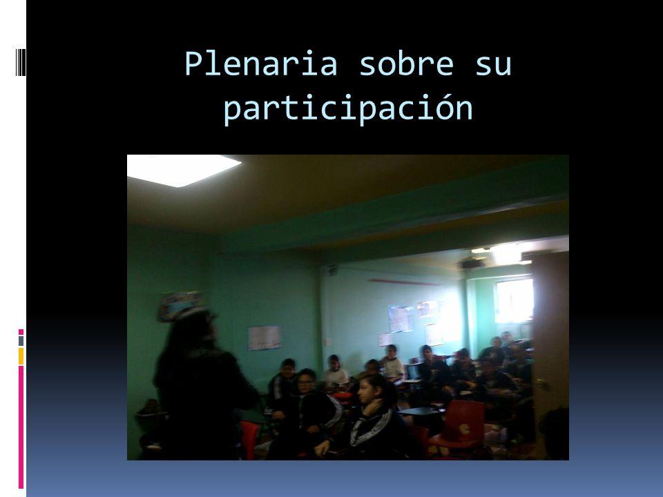 Plenaria sobre su participación