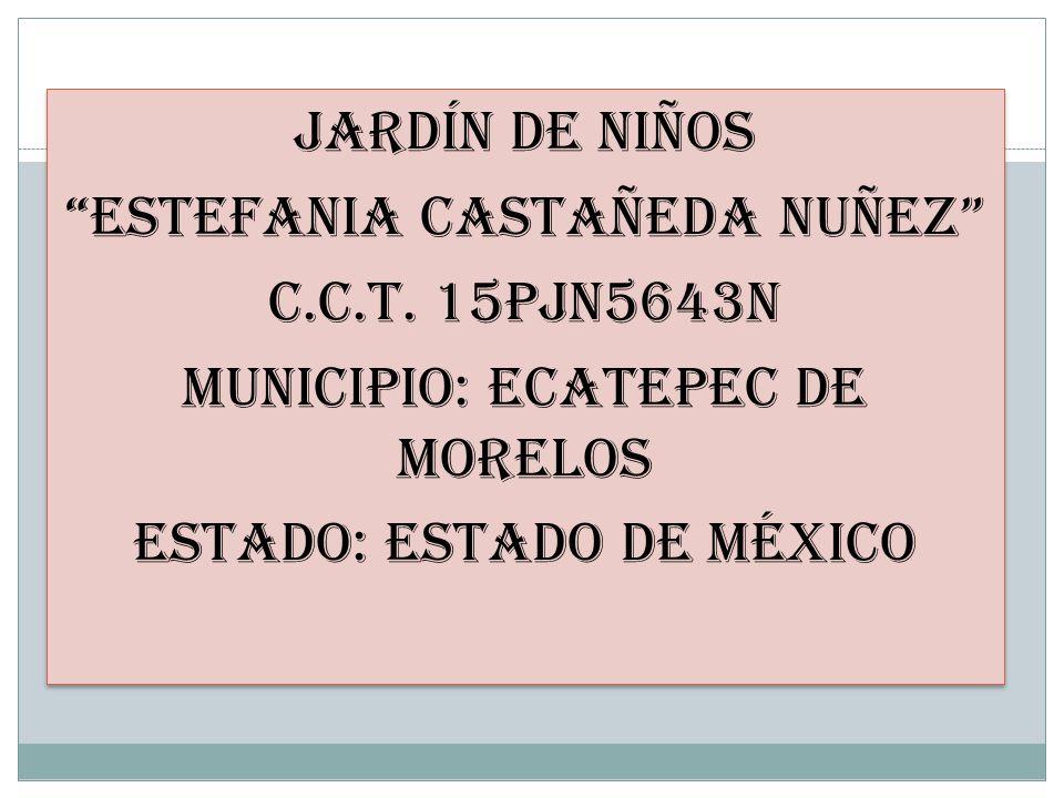 JARDÍN DE NIÑOS ESTEFANIA CASTAÑEDA NUÑEZ C. C. T