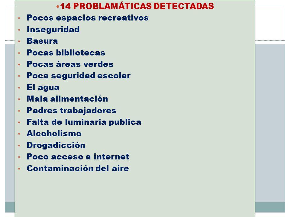 14 PROBLAMÁTICAS DETECTADAS