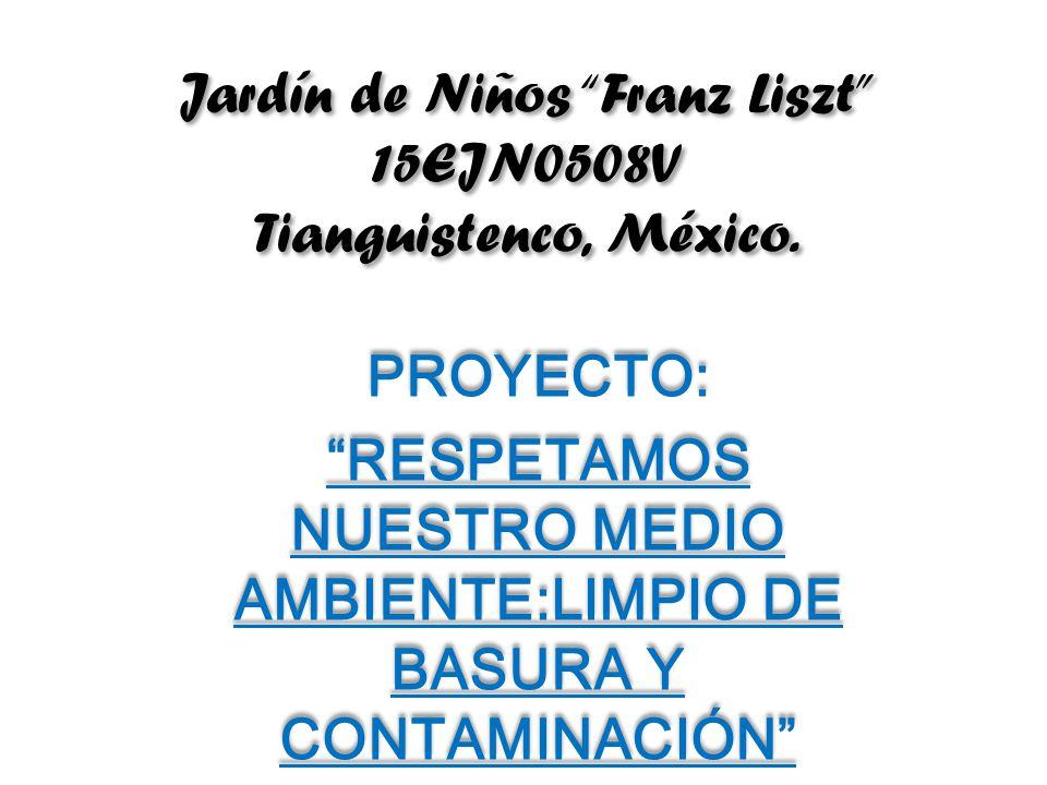 Jardín de Niños Franz Liszt 15EJN0508V Tianguistenco, México.