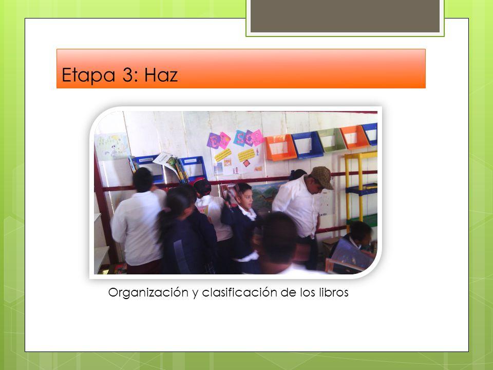 Etapa 3: Haz Organización y clasificación de los libros