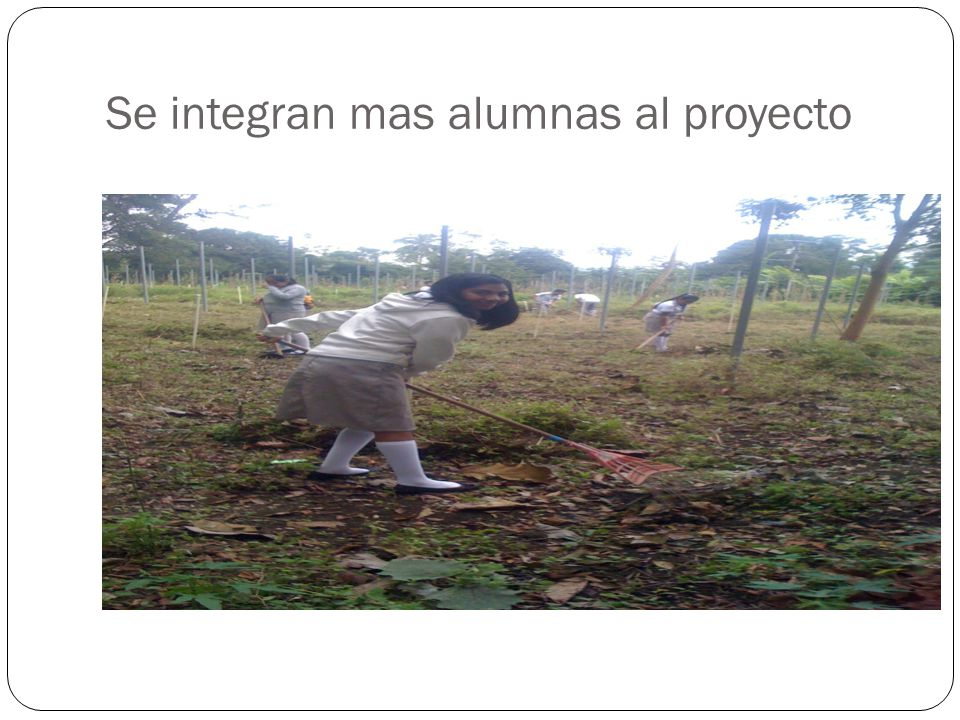 Se integran mas alumnas al proyecto