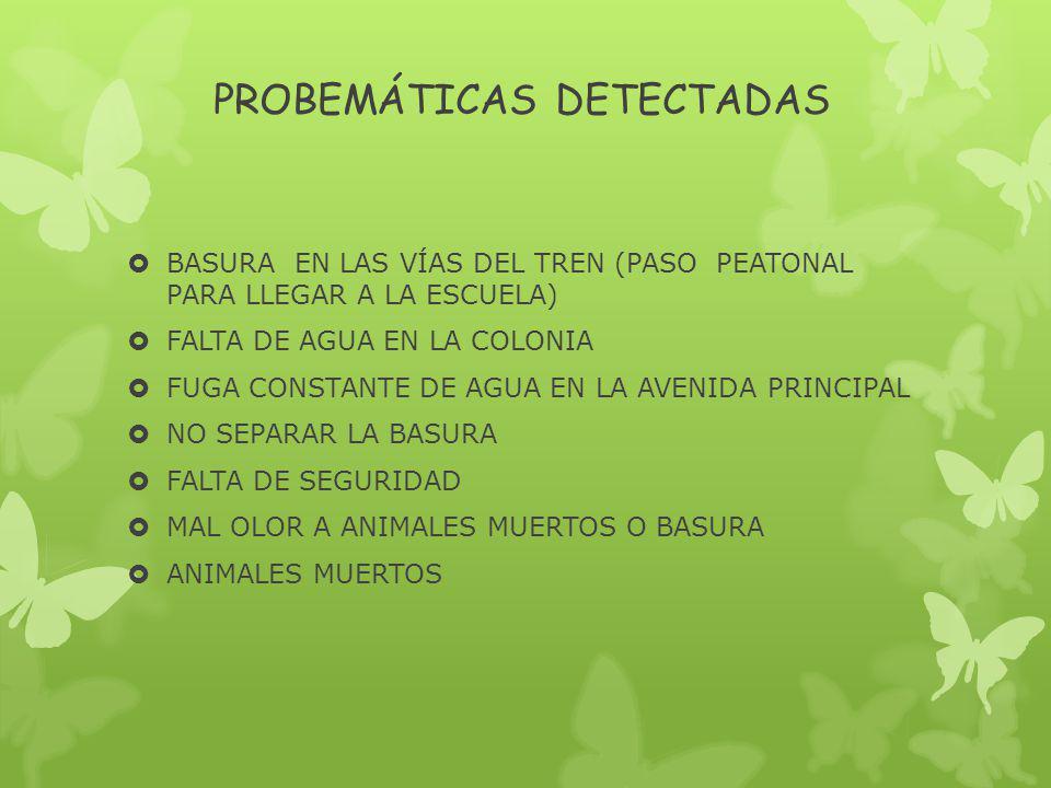 PROBEMÁTICAS DETECTADAS