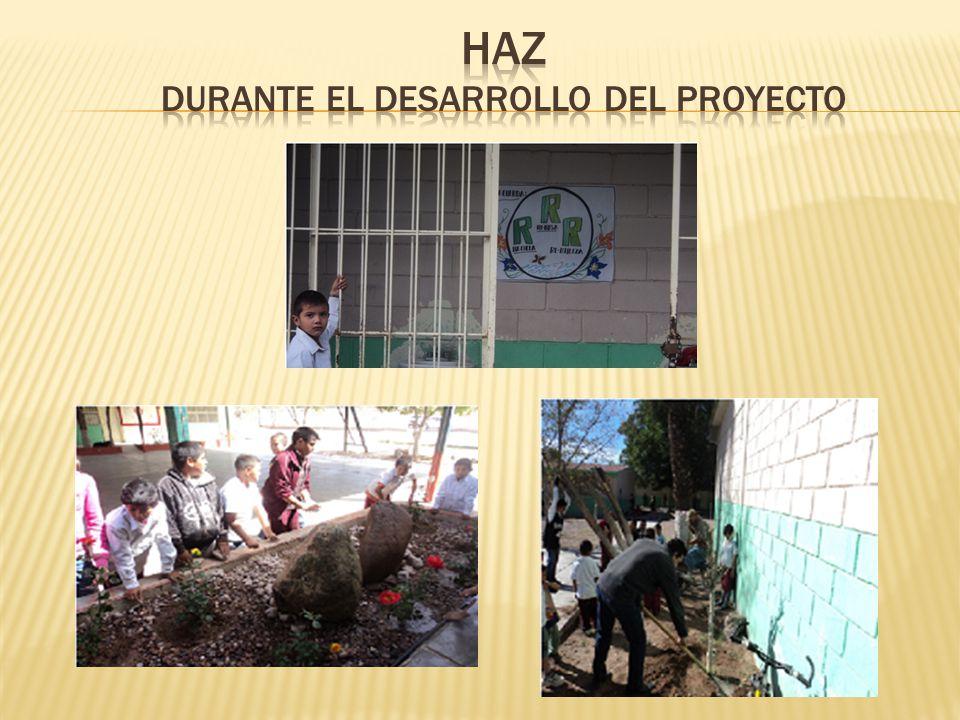 HAZ DURANTE EL DESARROLLO DEL PROYECTO