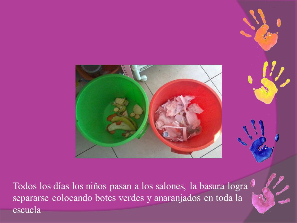 Todos los días los niños pasan a los salones, la basura logra separarse colocando botes verdes y anaranjados en toda la escuela
