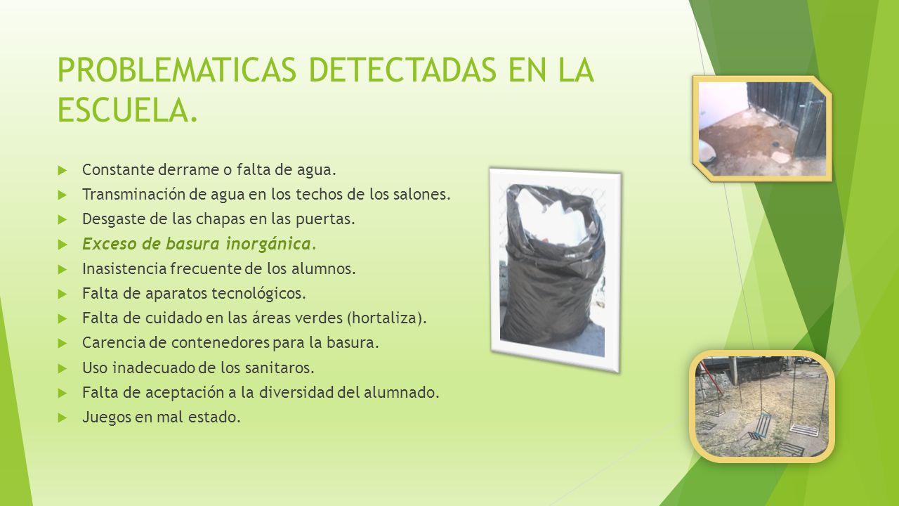 PROBLEMATICAS DETECTADAS EN LA ESCUELA.