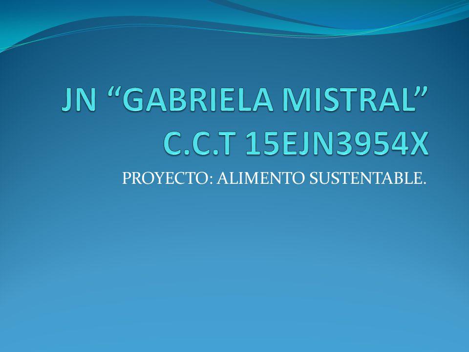 JN GABRIELA MISTRAL C.C.T 15EJN3954X