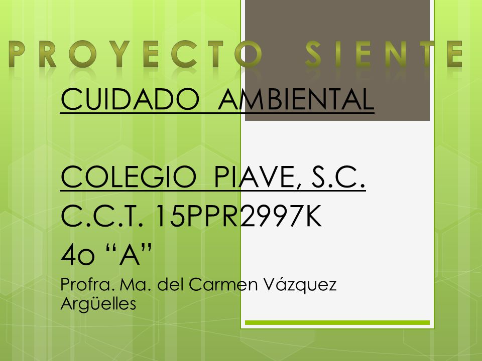 P R O Y E C T O S I E N T E CUIDADO AMBIENTAL COLEGIO PIAVE, S.C.