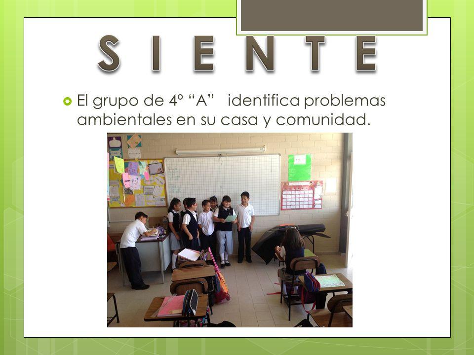 S I E N T E El grupo de 4º A identifica problemas ambientales en su casa y comunidad.